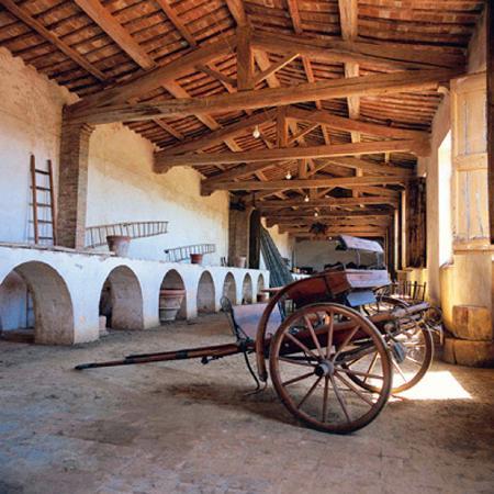 Montechiaro Estates & Wine Experience: Montechiaro estate: the Limonaia