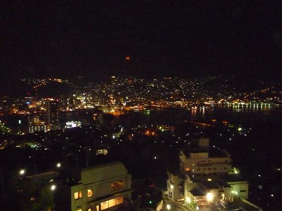 Inasayama Kanko Hotel: 屋上からの眺め
