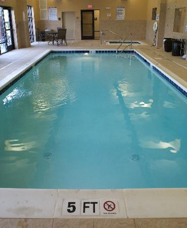 Hampton Inn Greenville : Indoor Pool and Hydrotherapy Spa