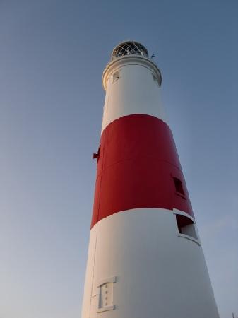 Fairview Cottage: Portland lighthouse