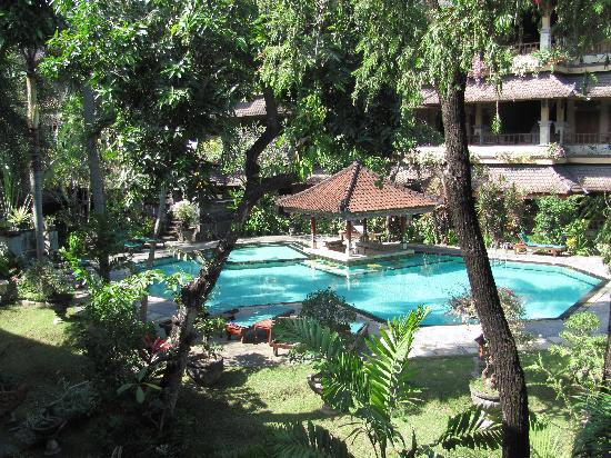 Bali Sandy Cottages : pool area