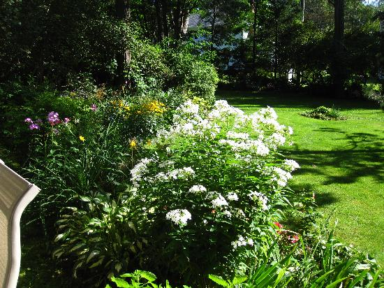 Elmwood Heritage Inn: Elmwood's garden