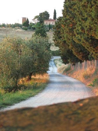 Hotel Borgo Casabianca: Back road leading into Villa