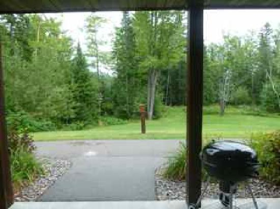 "Wild Eagle Lodge: ""Lake view"" from patio"
