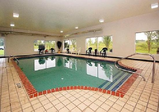 Comfort Inn : Swimming Pool