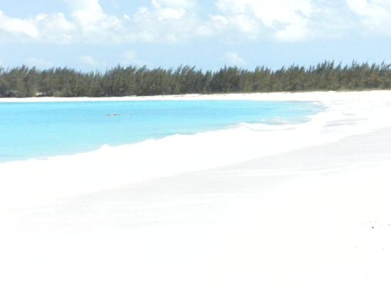 4c8ce46f9 1 mile of private beach - Picture of Sandals Emerald Bay Golf ...