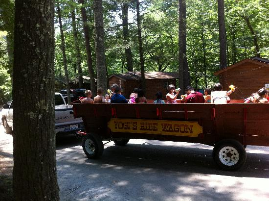 Yogi in the Smokies: Wagon Rides