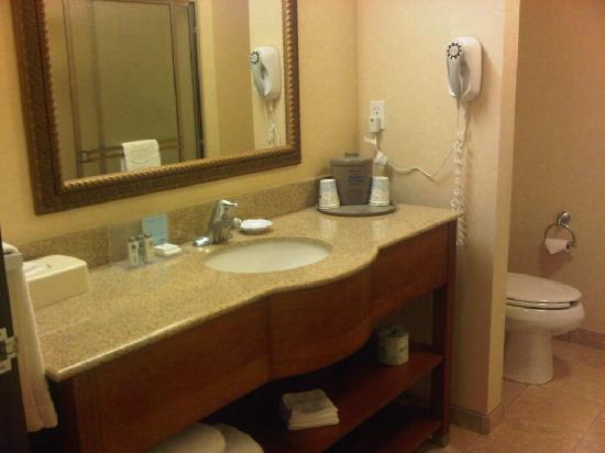 Hampton Inn & Suites Burlington: Bathroom