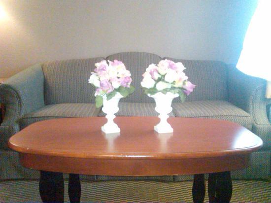 Hondo Executive Inn: Sofa