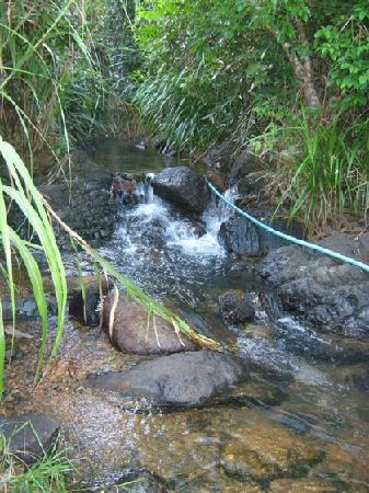 Filippinerne: Small spring in Morocborocan