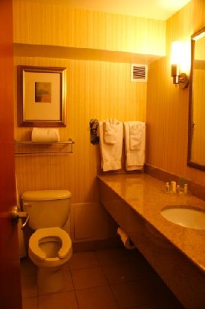 Holiday Inn Richmond South-Bells Road: bathroom