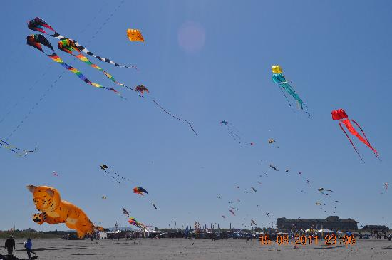 Enchanted Cottages: Long Beach Kite Festival 2011