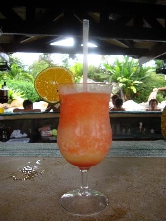Hotel Mountain Paradise: Delicious Arenal Volcano drink at wet bar, made by Andrés!