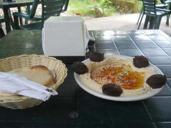 Zula Restaurant: Hummus falafel...Yammi