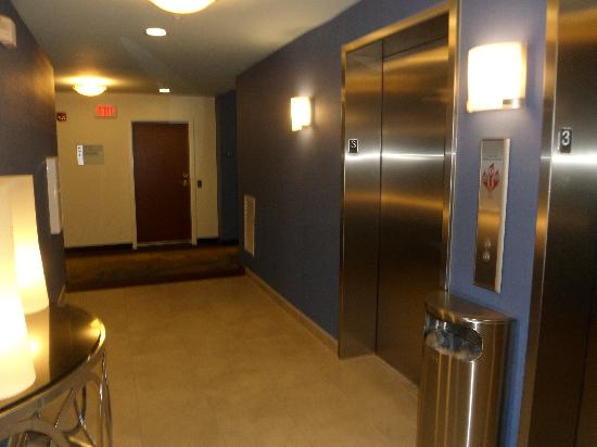 Holiday Inn Express & Suites Terre Haute: Elevator area on 3rd floor
