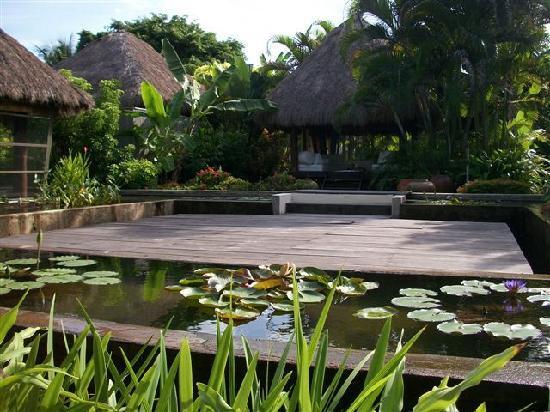 Evason Ana Mandara Nha Trang : Spa View