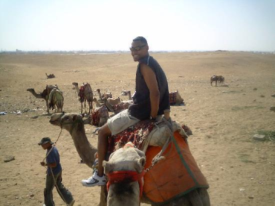 Hadeda Travel - Day Tours: Camel ride