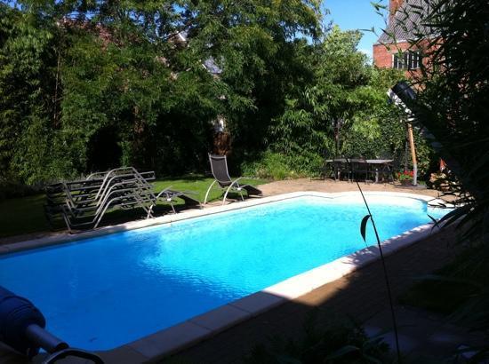 Van Reeth's Koffiebranderij: the pool