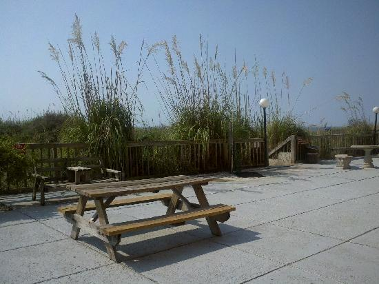 Red Tree Inn Oceanfront: Oceanfront patio