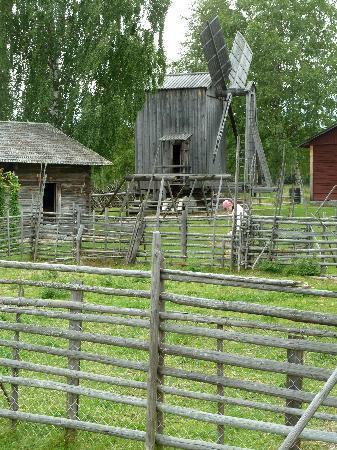 Pielisen Museum: Mühle