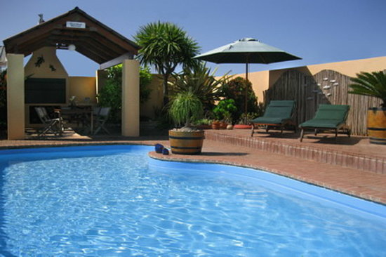 Avenues Guesthouse: Solar-heated Saltwater Pool