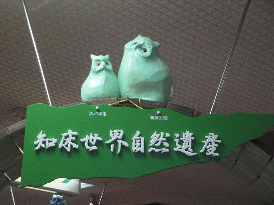 Shiretoko Nature Center: 知床自然センター展示