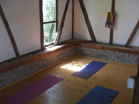 Yoga Dharma - Day Class: A wondufully converted bard is ideal for the early morning yoga practice!