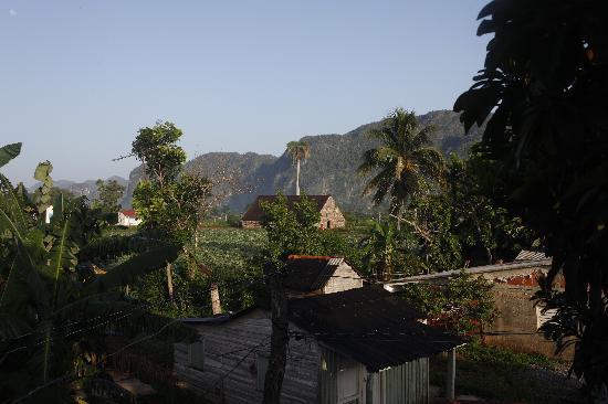 Casa Particular Ridel y Claribel: vista dalla stanza