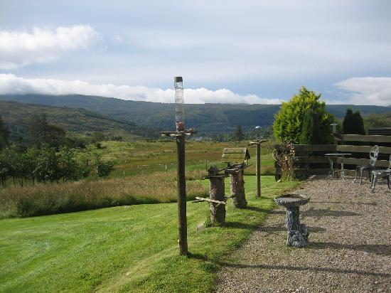 Heatherbank Guesthouse Bed and Breakfast: Bird watching with views