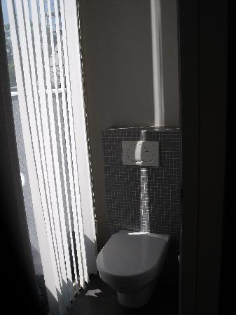Aquarius Guesthouse: Private Toilet