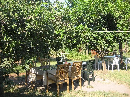 Kiyi Pansiyon : Garden-restaurant