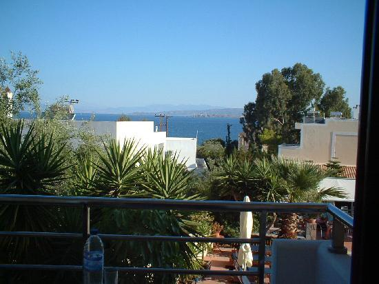 Ela Mesa Luxury Apartments: A view from our room