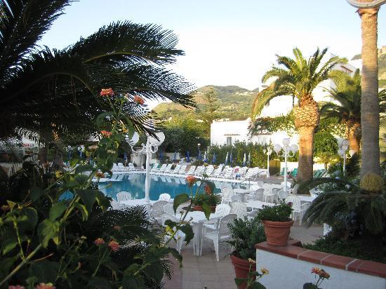 Hotel Terme Royal Palm: Бассейн отеля