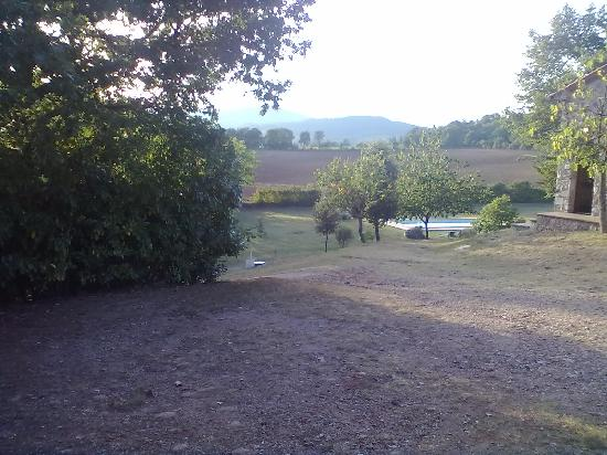 Agriturismo San Michele: La piscina