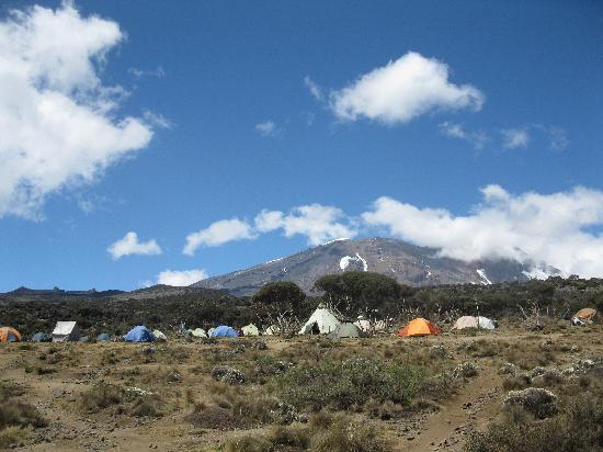 Mount Kilimanjaro: The look of the camp
