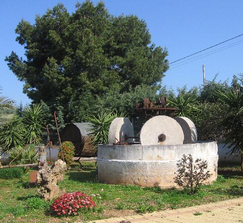 Masseria Calderale: La macina