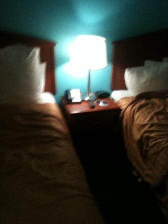 Quality Inn and Suites: Beds