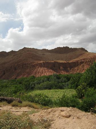 region alemdoun