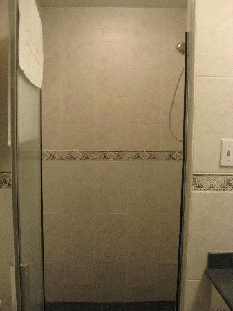 Hilltop Bed and Breakfast : HUGE shower (in private bathroom)