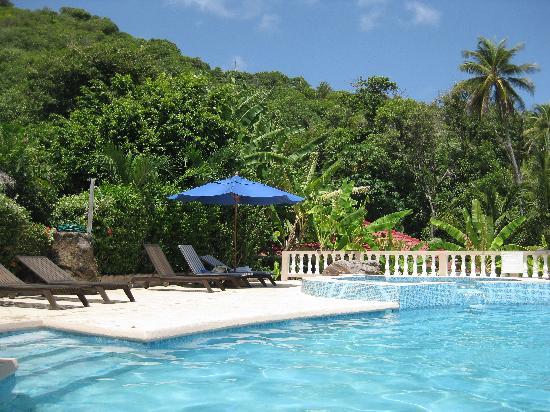 Saint Patrick Parish, Grenada: Idyllic pool