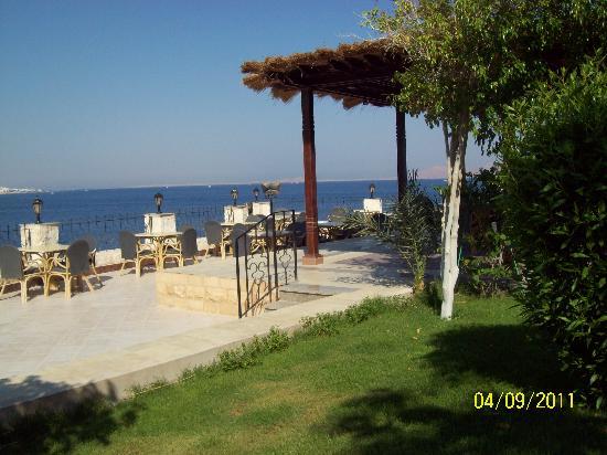 Sultan Gardens Resort: bar