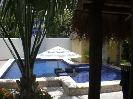 Villa Escondida Cozumel Bed and Breakfast: Pool