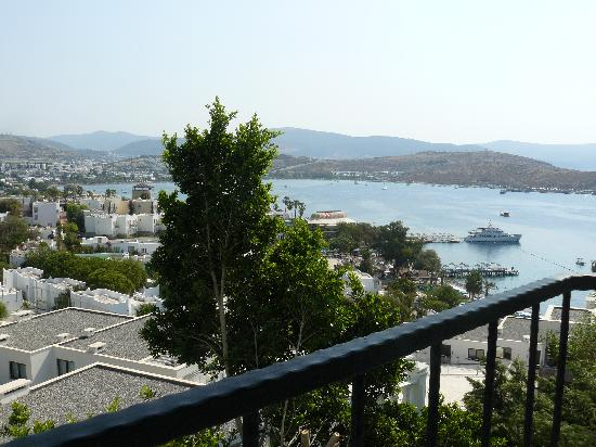Blue Moon Hotel &  Resort: View from balcony