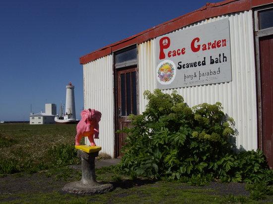 Peace Garden Seaweed and Kelp Bath: Seaweed bath in an old barn