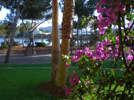 Grupotel Santa Eularia Hotel: Blick vom geschützten Balkon