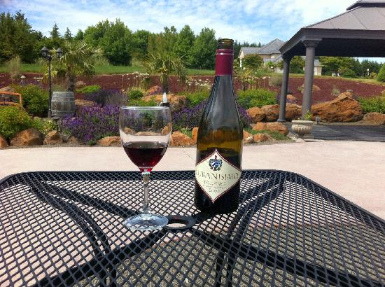 Cubanisimo Vineyards : Wine on the patio