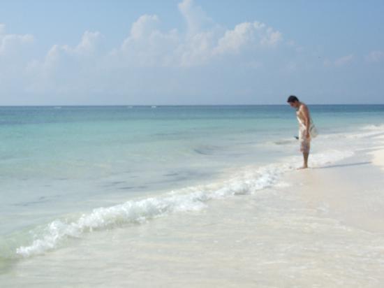 Secrets Maroma Beach Riviera Cancun: Punta Maroma!!