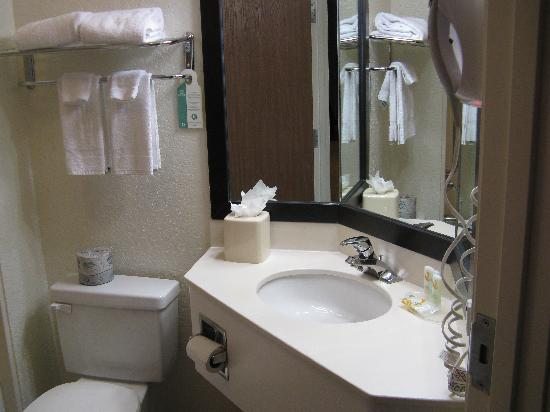 Quality Inn & Suites Denver International Airport: Corner vanity in standard room