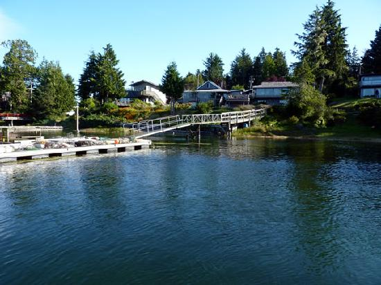 Tofino Swell Lodge: Looking from the dock area.