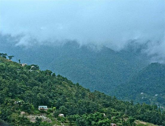Shivapuri Heights Cottages: View from Shivapuri Cottage